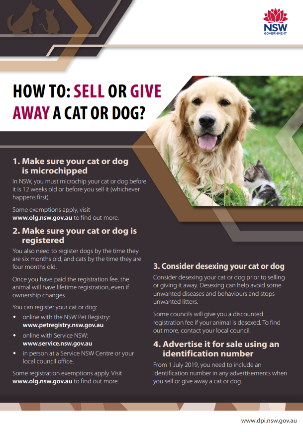How-to-sell-or-gove-away-a-dog-1.png
